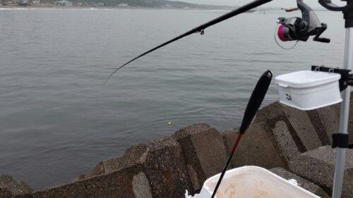 フカセ釣り開始