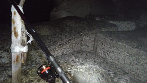 夜のイシモチ釣り